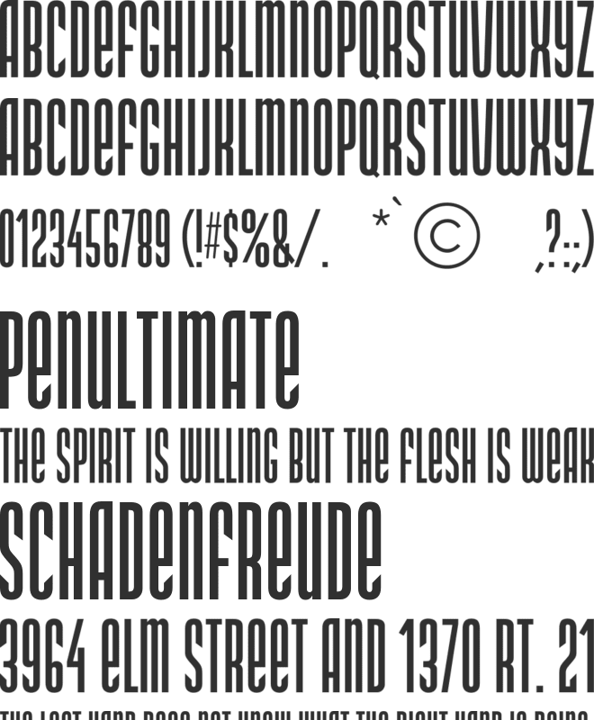 DS Narrow font preview