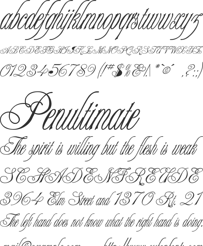 Champagne font preview