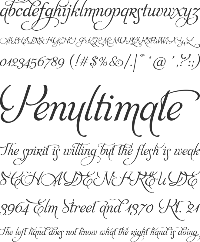 Fonts that support the
