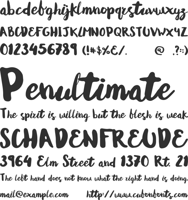 Andrea Normal font preview