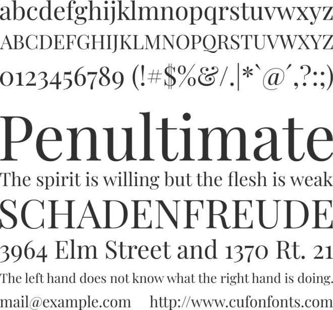 Playfair Display font preview