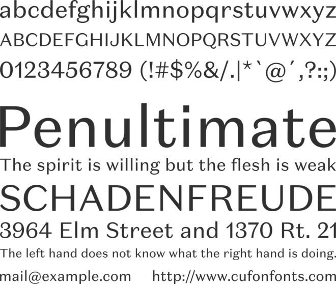 Domaine Sans Text font preview