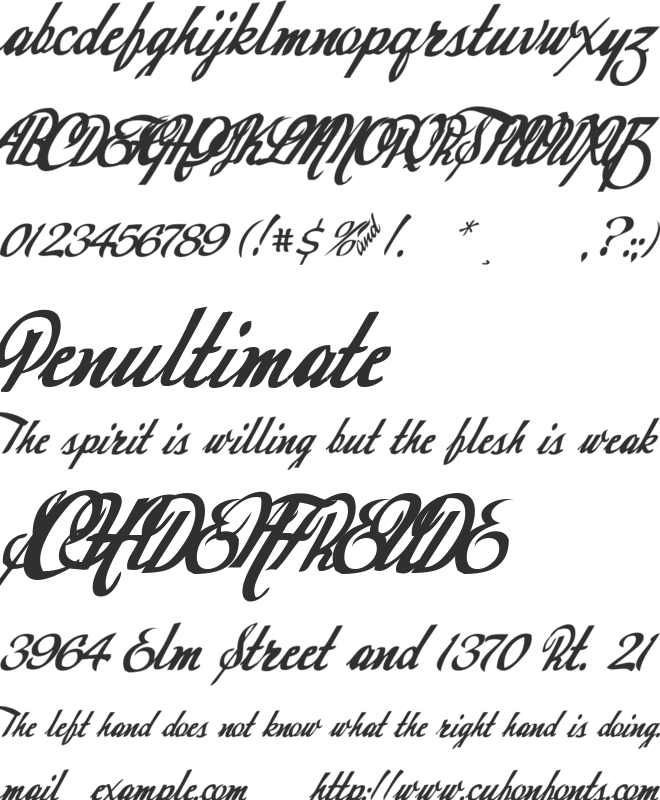 Today font preview
