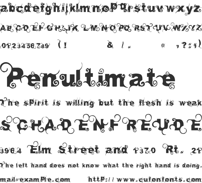 Curly font preview