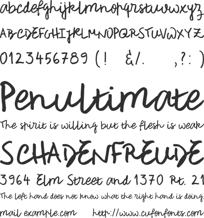 Rough Notes Sample font preview