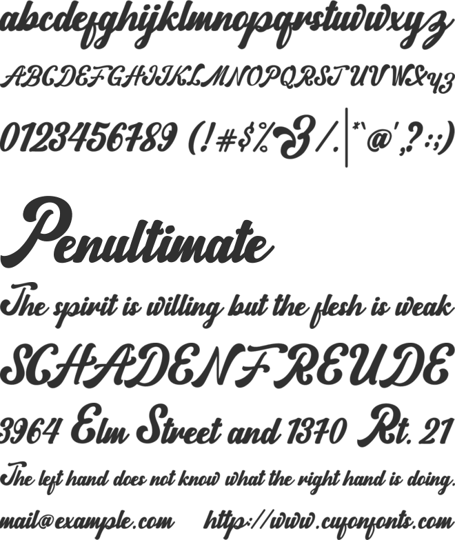Norty font preview