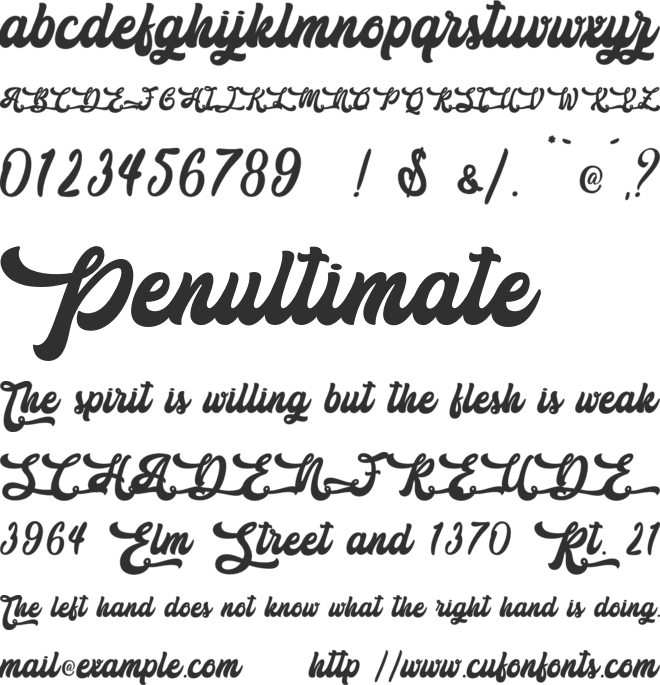 The Holiday - Personal Use font preview