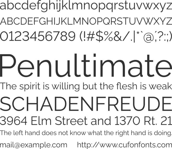 Rawline font preview
