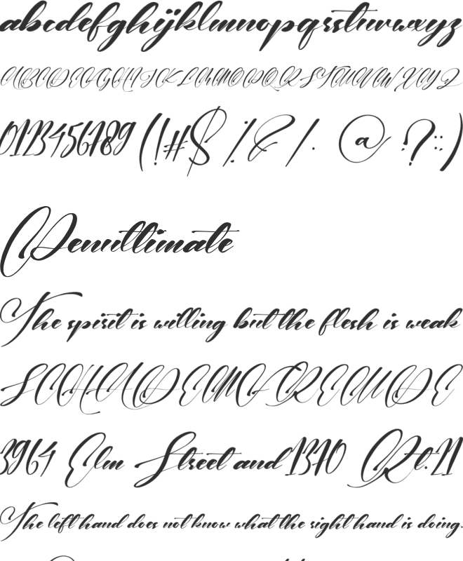 Wedding Party font preview