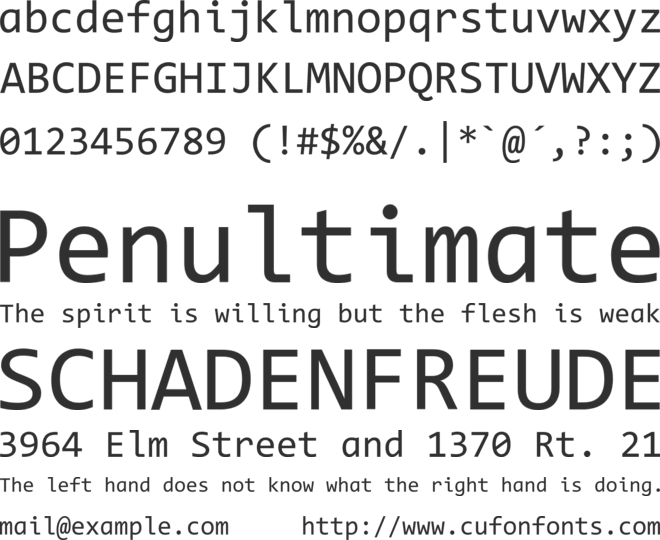 Code New Roman font preview
