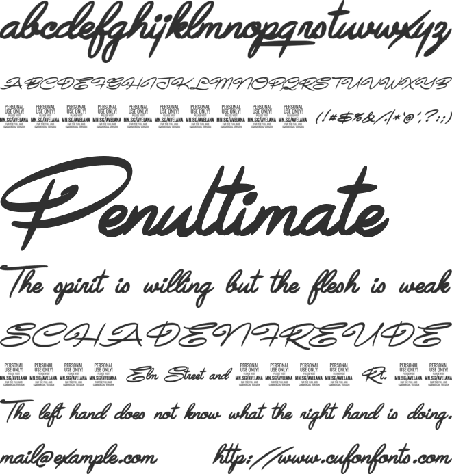 Avelana  Ital PERSONAL USE font preview