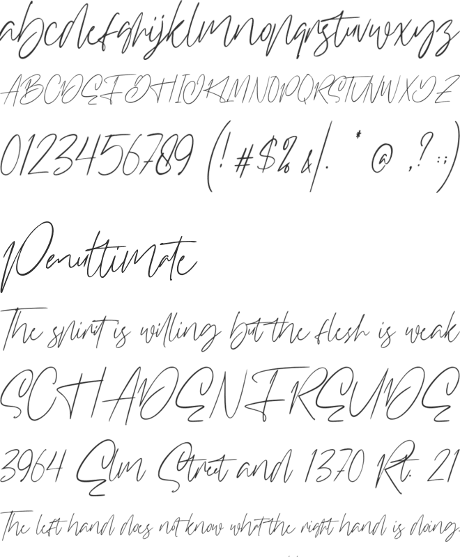 Williamson font preview
