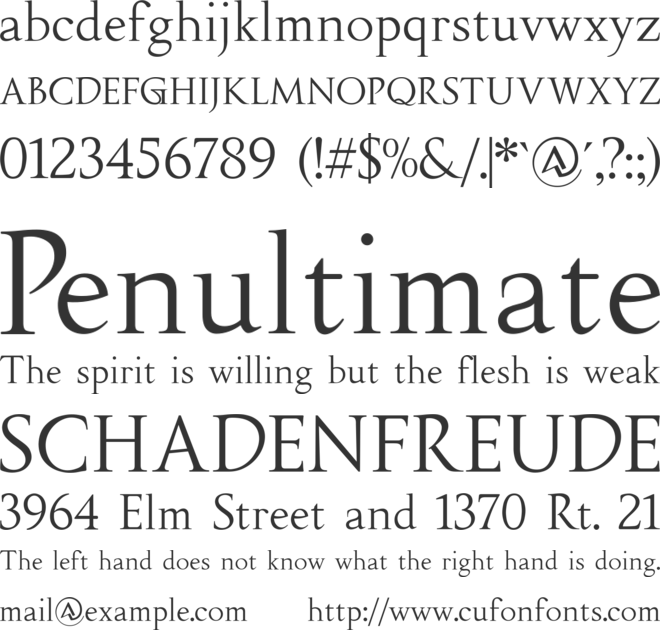 Fipty Serif font preview