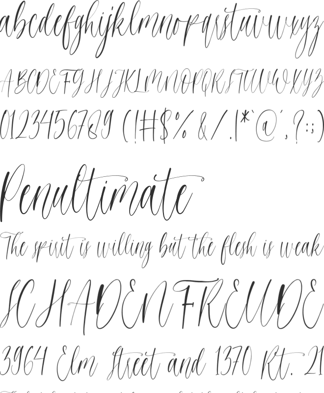 higheals font preview