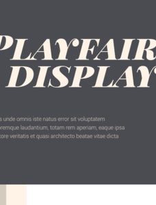 Playfair Display Font Family
