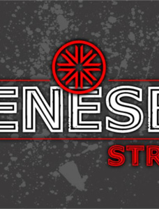 Genesee St Font Family