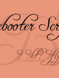 Freebooter Script - Alts Font Family