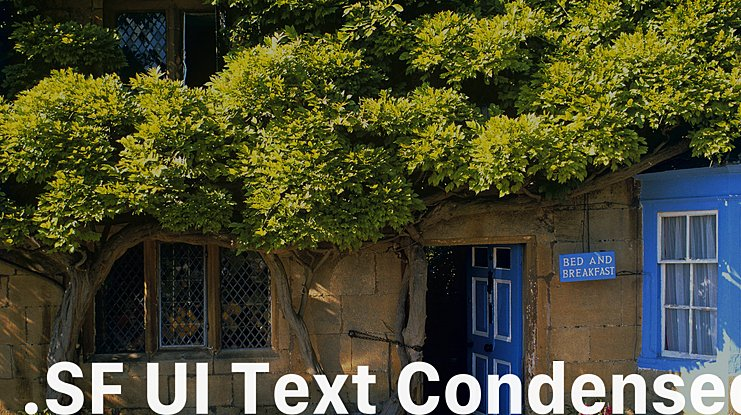 .SF UI Text Condensed Font Family