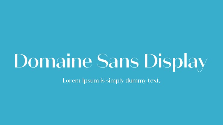 Domaine Sans Display Font Family