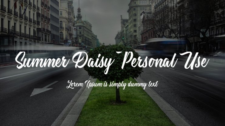 Summer Daisy Personal Use Font
