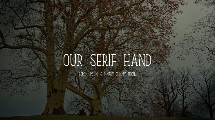 Our Serif Hand Font