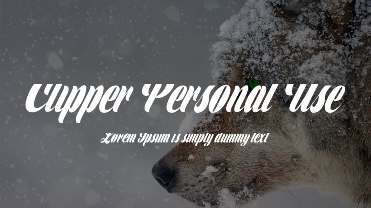 Clipper Personal Use Font