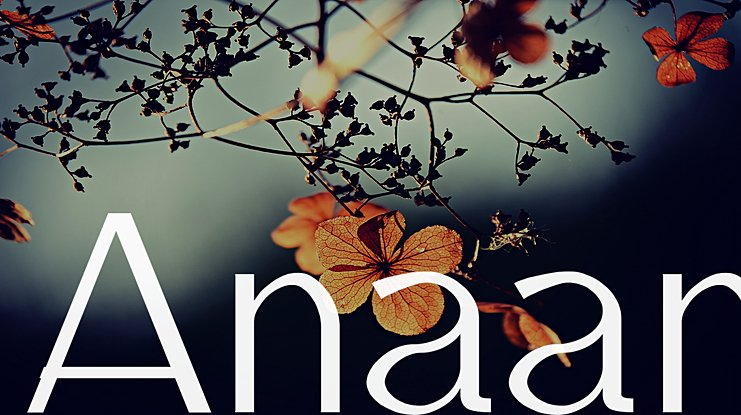 Anaan Font Family