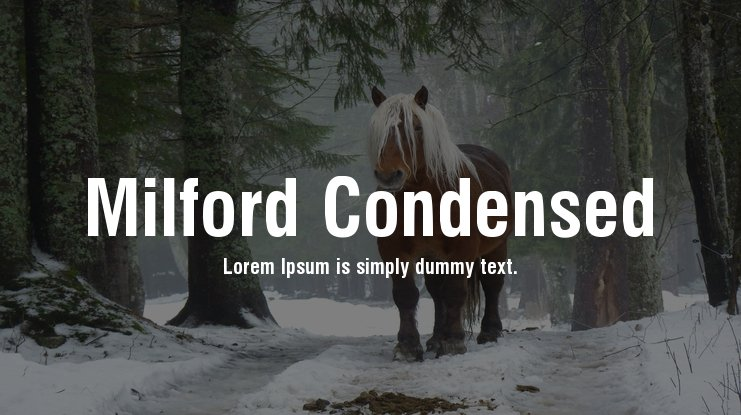 Milford Condensed Font Family
