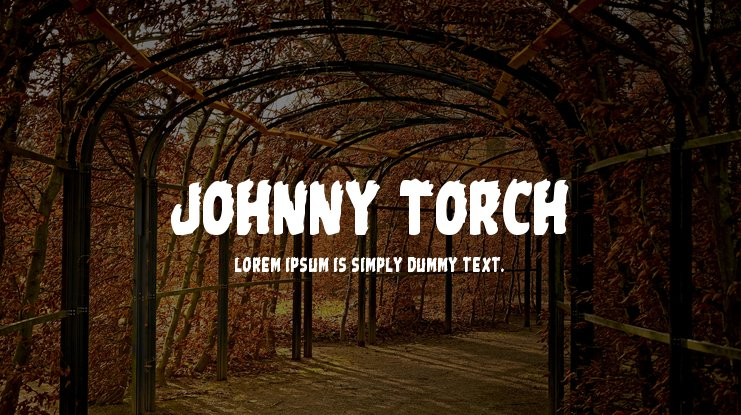 Johnny Torch Font Family