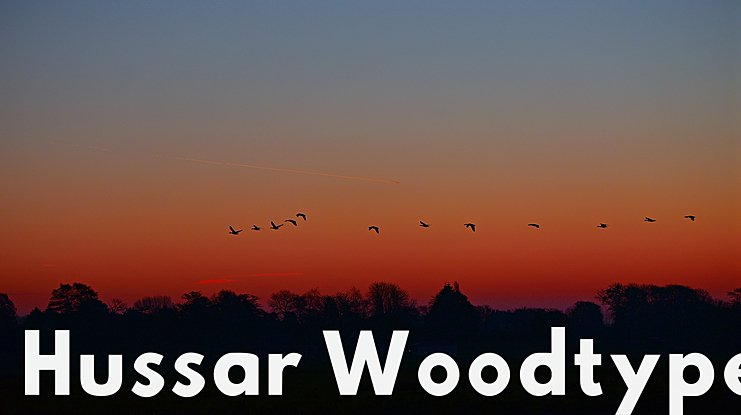 Hussar Woodtype Font Family