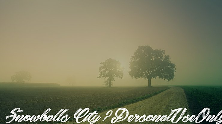 Snowballs City_PersonalUseOnly Font