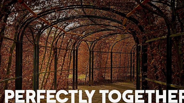 Perfectly Together Font