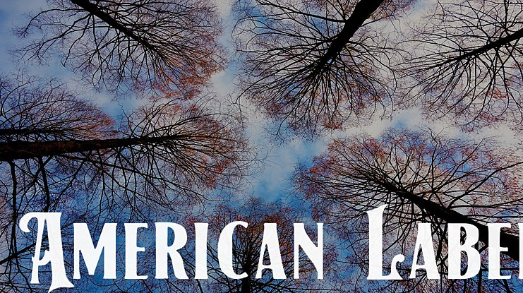American Label Font Family