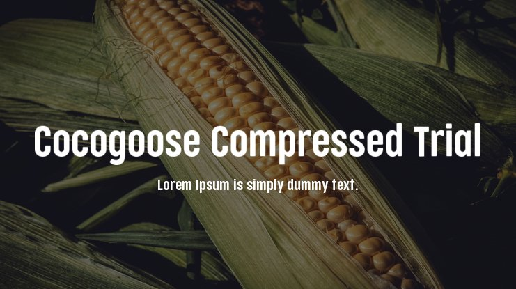 Cocogoose Compressed Trial Font Family