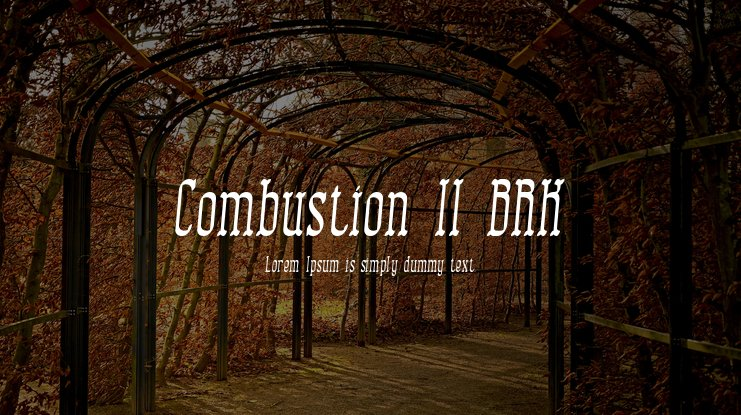 Combustion II BRK Font Family