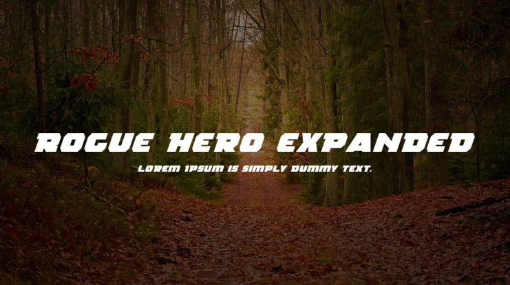 Rogue Hero Expanded Font