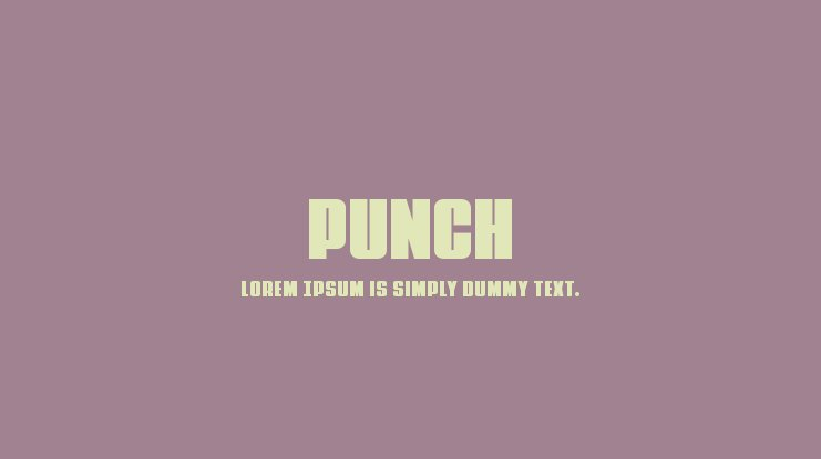 Punch Font Family