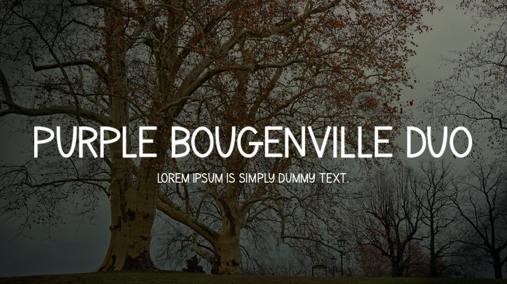 Purple Bougenville Duo Font Family