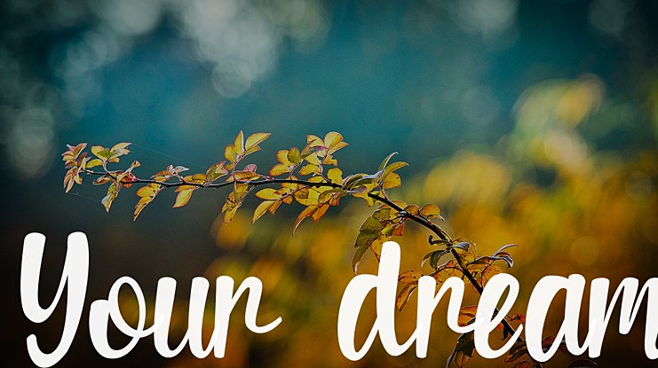 Your dream Font Family