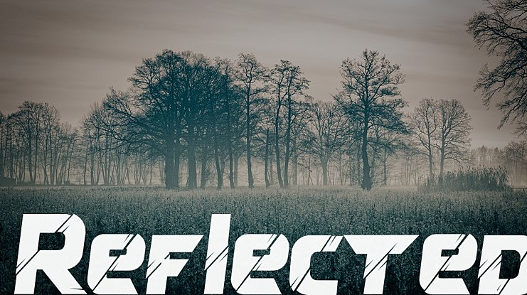 Reflected Font Family