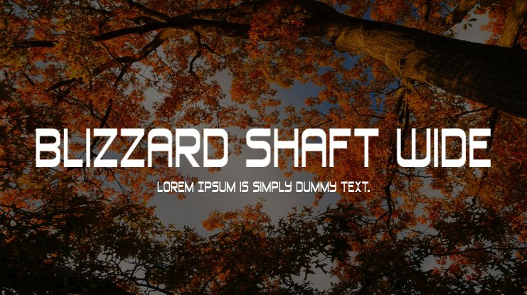 Blizzard Shaft Wide Font Family
