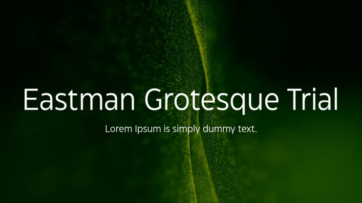 Eastman Grotesque Trial Font Family