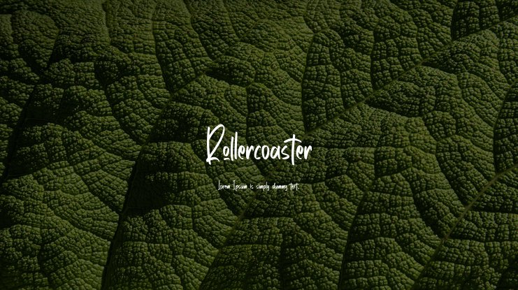 Rollercoaster Font Family