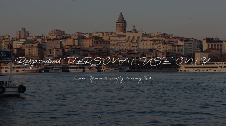 Respondent PERSONAL USE ONLY Font Family