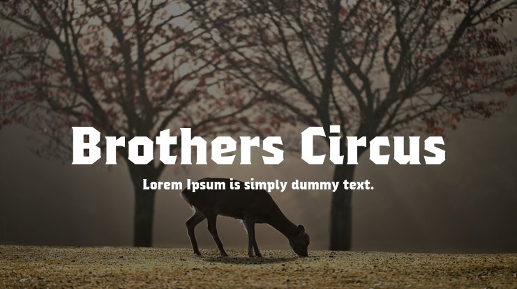 Brothers Circus Font