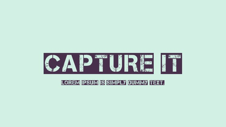 Capture it Font Family