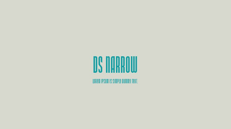DS Narrow Font